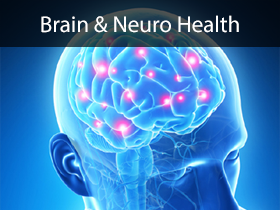Brain and Neuro Health Medical Lectures