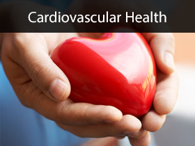 Cardiovascular Health Medical Lectures
