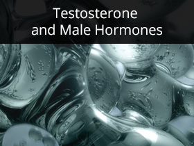 Testosterone and Male Hormones Medical Lectures