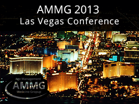 AMMG 2013 Las Vegas Conference on DigiVision